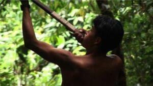 CINECLUBES DE CÓRDOBA (23) / CINEFILIA ONLINE (06): CONSAGRADOS Y DESCONOCIDOS